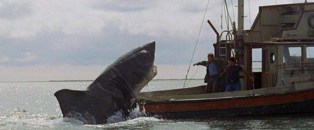 Cinema shark makes Sydney pool its playground