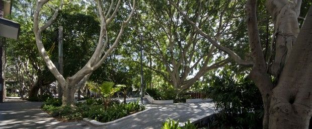 City's parks and public spaces lauded at landscape awards