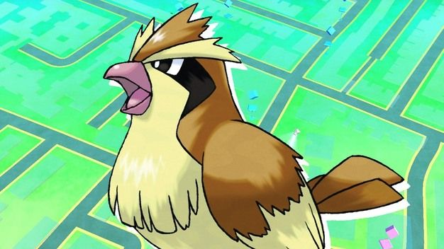 pokemon go pidgey exploit
