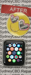 Fixed Watch Sport - 42mm