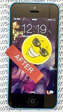 10 Fixed iPhone 5c