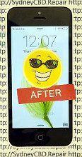 12 Fixed iPhone 5c