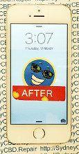 12 Fixed iPhone SE