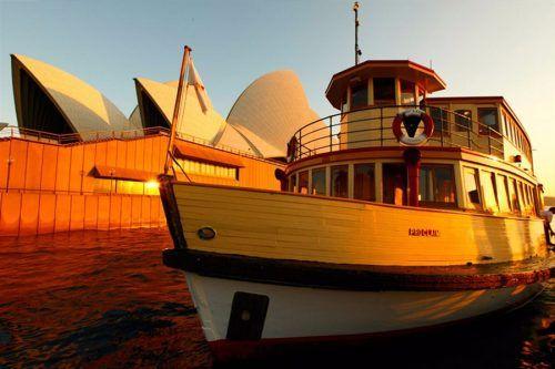 vivid harbour cruise
